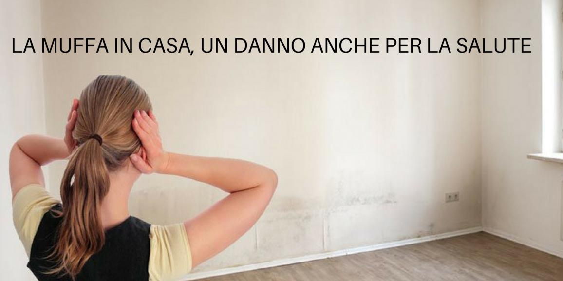 Muffa un pericolo per la salute rip el di pitasi francesco - Combattere la muffa in casa ...